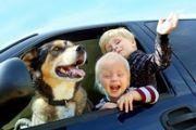 Безопасность ребенка в машине. Основные правила