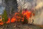 Рекомендации населению по поведению в условиях высокой задымленности от лесных пожаров
