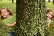 Безопасность детей в лесу